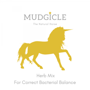 Mudgicle Herb Mix